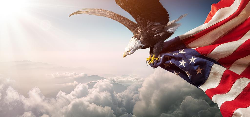 eagle arrests